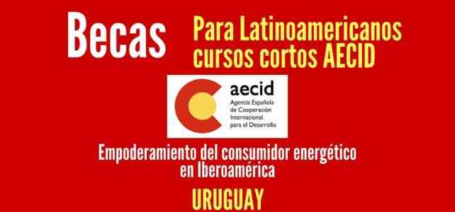 AECID ofrece becas para el cursos cortos en Uruguay