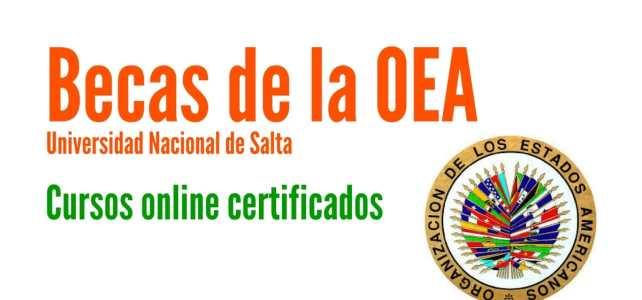 Becas OEA completa para cursos online con la Universidad Nacional de Salta