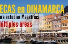 Becas en Dinamarca para latinoamericanos