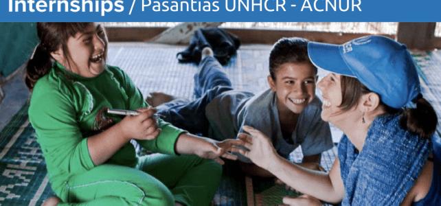 Pasantías en ACNUR – UNHCR: La agencia de la ONU para los refugiados