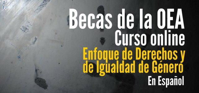 Becas para curso de la OEA sobre Enfoque de Derechos y de Igualdad de Género