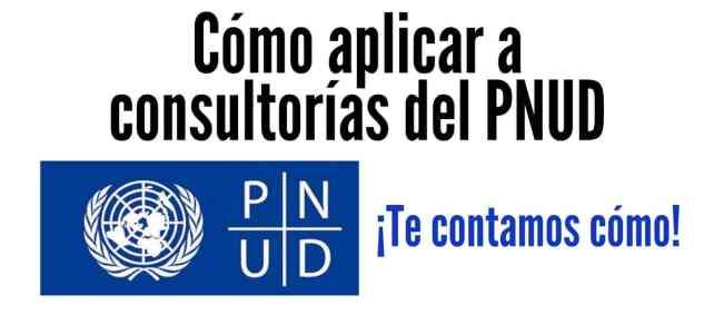 Te contamos cómo acceder a las consultorías del PNUD  – Naciones Unidas