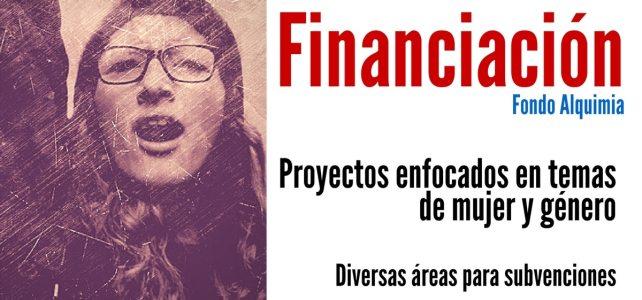 Financiamiento en Chile a proyectos enfocados en temas de mujer y género