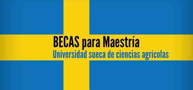 Beca para maestría en Suecia