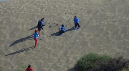 Estudiantes de Maspalomas aprenden a proteger la Reserva de las Dunas