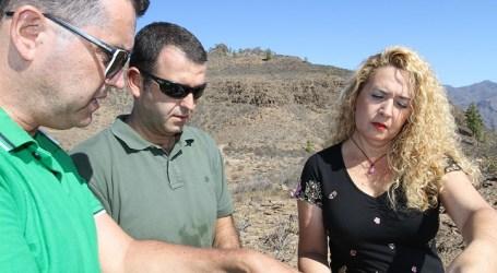El Cabildo reforesta el Monte de Arguineguín con 26.000 nuevas plantas
