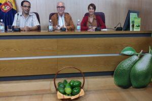 Los aguacates de Mogán se presentan en el Cabildo de Gran Canaria