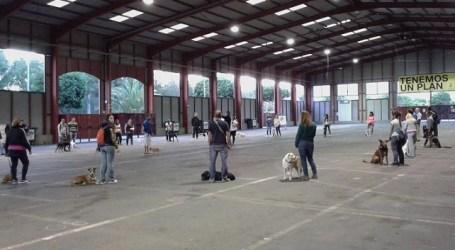 Más de 200 personas interesadas en el curso de tenencia responsable de perros