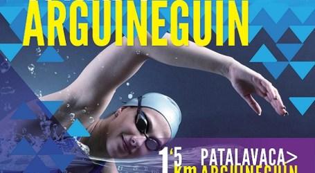 Nuevo récord de inscritos en la III Travesía a Nado Arguineguín-Patalavaca