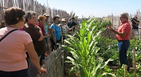 Un grupo de mayores conocen los huertos urbanos y las Salinas de Tenefé