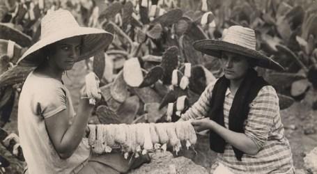 La carreta de la romería del Pino resalta el papel de la tunera en la historia y el paisaje