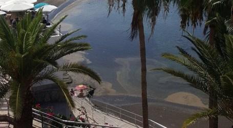 NC exige a Onalia Bueno un plan de actuación ante la aparición de microalgas en las playas de Mogán