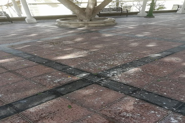 Plaza Sarmiento y Coto, abandono y dejadez