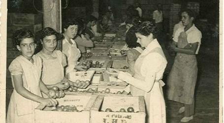 Las mujeres empaquetadoras de tomates reciben el Premio Roque Nublo del Cabildo