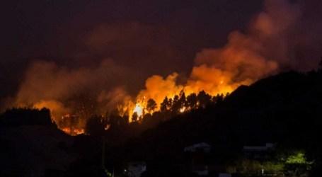 Incendio de Gran Canaria: comunicado del colectivo Gana/Grupo Verde de Santa Lucía de Tirajana