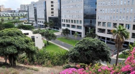 UGT pide el 'Premio Canarias' para los trabajadores de los servicios esenciales, activos durante el estado de alarma