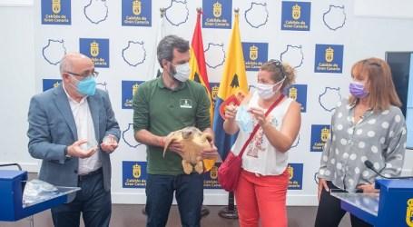 El Cabildo dedica el Día del Medio Ambiente al nuevo problema medioambiental y sanitario provocado por las mascarillas