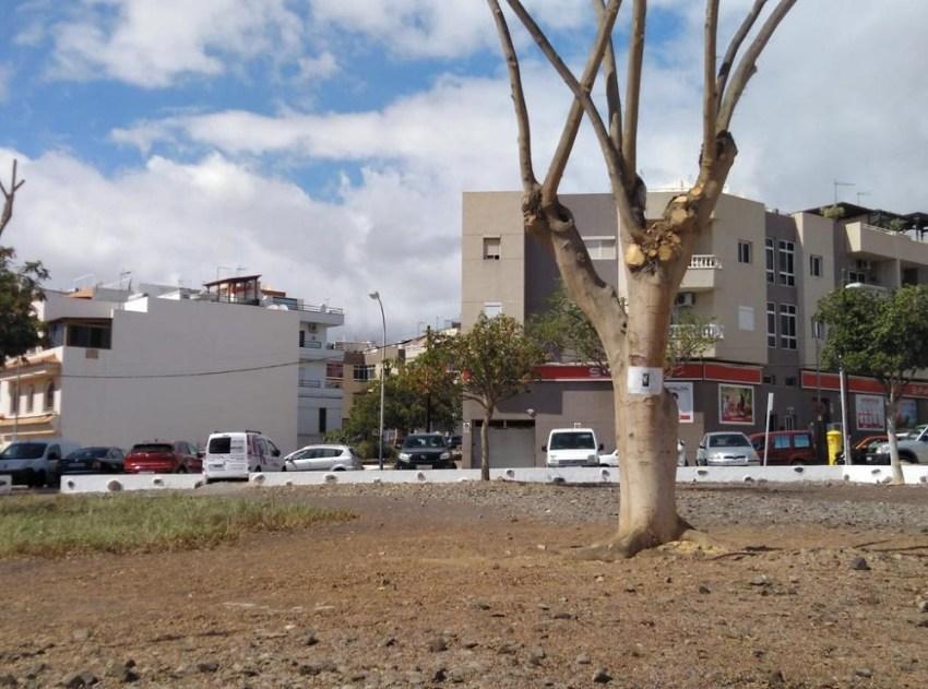 """La oposición asegura que San Bartolomé de Tirajana """"se seca""""  El PP-AV traslada a la opinión pública el malestar de los vecinos de El Tablero ante el abandono de las zonas verdes"""