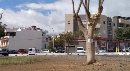 "La oposición asegura que San Bartolomé de Tirajana ""se seca"""
