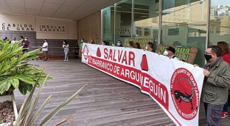 La Plataforma Salvar Chira-Soria despide el año manifestándose ante el Cabildo de Gran Canaria