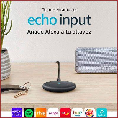 Oferta Echo Input barato
