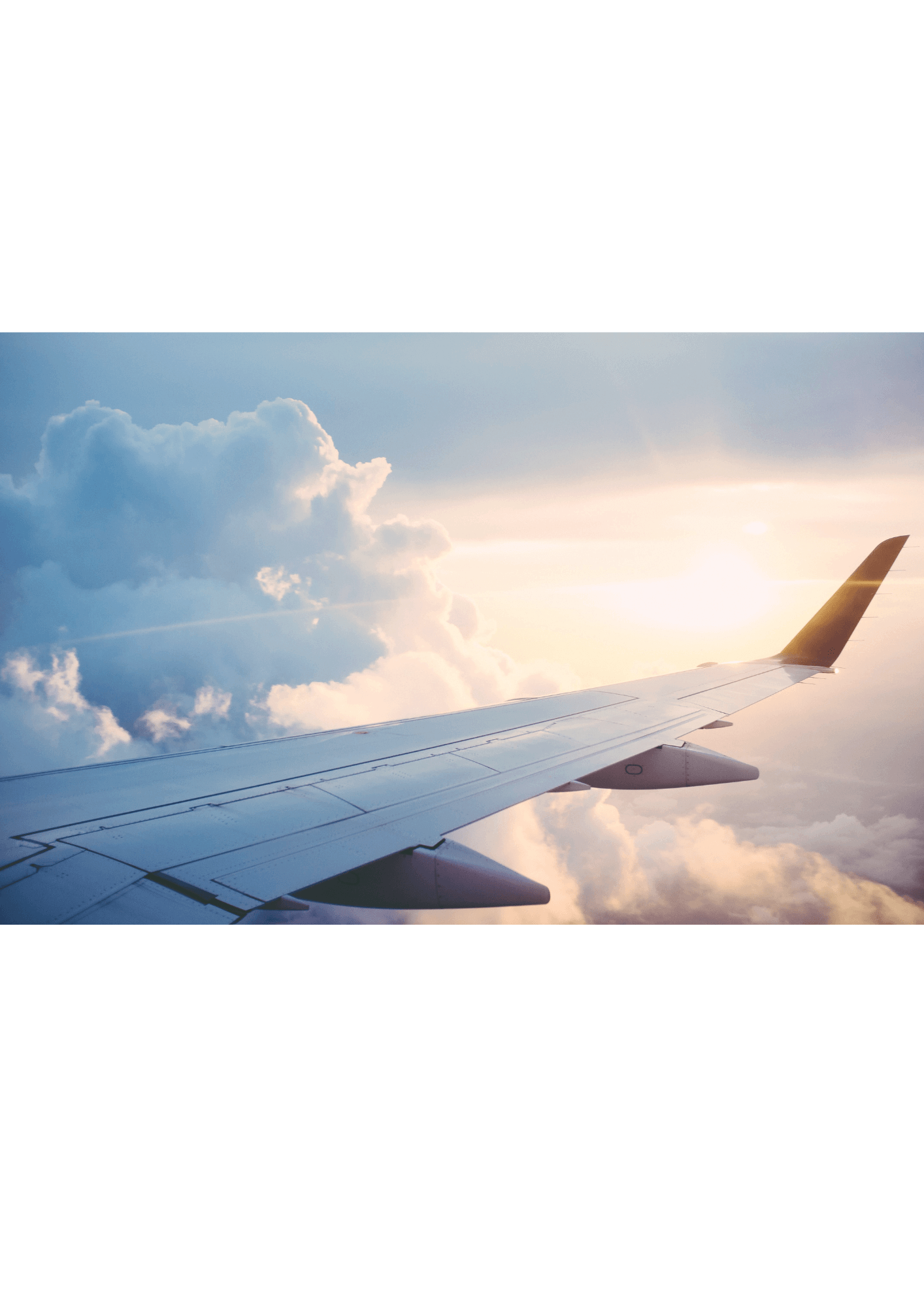 Airline: MMM Measurement to Cope with Crisis