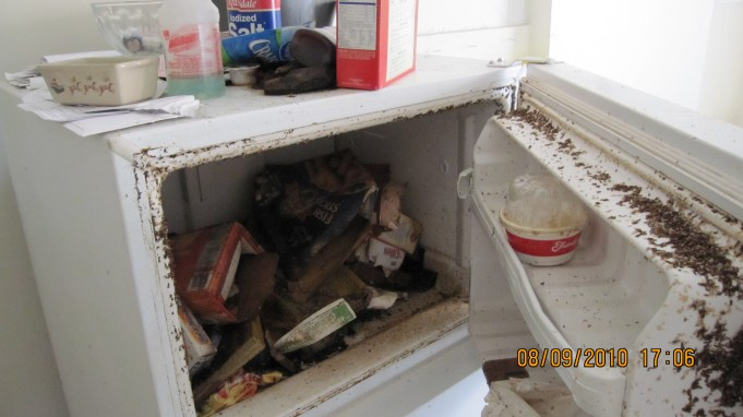 Refridgerator Infested with Maggots