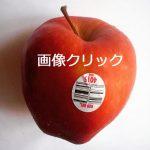 8から始まる果物は注意!!!