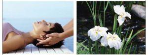 Massage Ayurvédique aux huiles essentielles