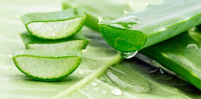 Aloe Vera Cabinet Drainage Lymphatique Massage Bex Corps Accord