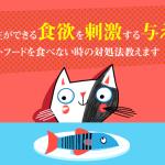 食べていたキャットフードを食べなくなった理由!猫の食欲を刺激する与え方教えます