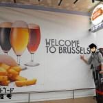 ベルギーのキャットフード事情は?ベルギーに視察に行ってきました