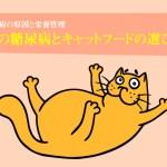 猫の糖尿病とキャットフードの選び方。原因と栄養管理