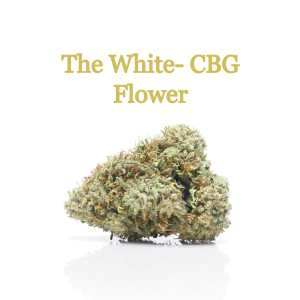 The White CBG Flower