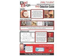 Bed Bug Detection Guide
