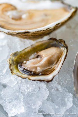 Olympias from the raw bar at simjang on Shrewsbury Street in Worcester, MA (Erb Photo for Mass Foodies)