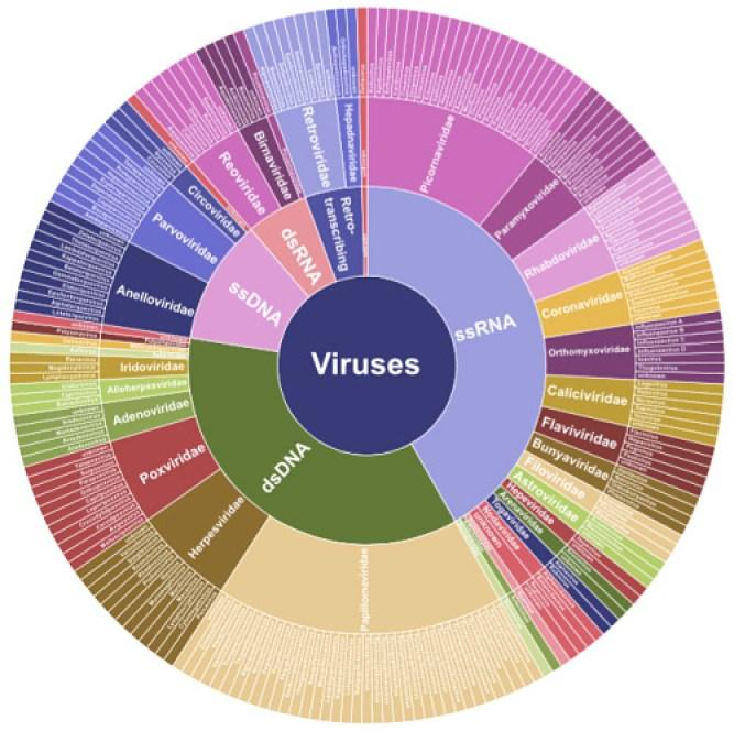 https://i2.wp.com/massgenomics.org/wp-content/uploads/2015/09/virome-capture-panel.jpg?resize=667%2C664
