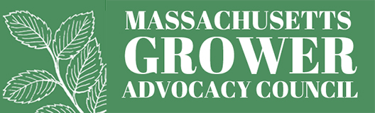 Massachusetts Growers Advocacy Council - Cannabis Growing