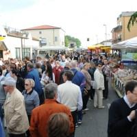 Albignasego: Domenica 19 maggio appuntamento con la Mostra-mercato in Via Roma, dalle ore 10.00 alle 24.00.