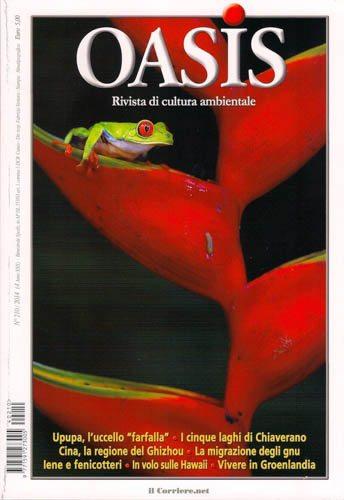 Massimo Basso - massimobasso.com copertina oasis n. 210