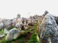 massolpanjava-stone garden 011