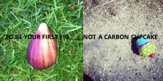 to be your first fig