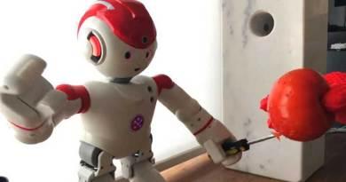 Ternyata Robot Mudah Diretas Untuk Serang Pemiliknya
