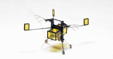 Robot Lebah Ini Sekarang Bisa Menyelam