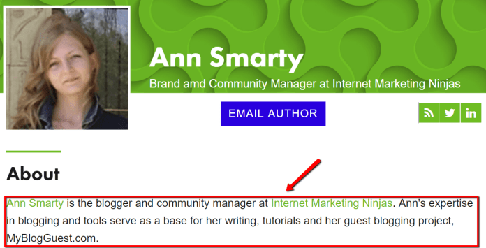 Ann Smarty guest posts