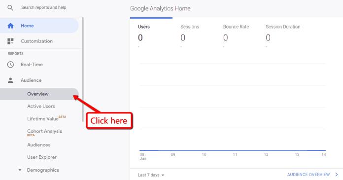 Google analytics Website overview