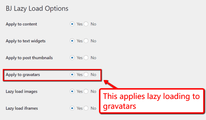 BJ lazy load options