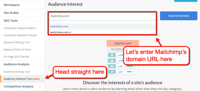 Audience Interest Tool on Mailchimp