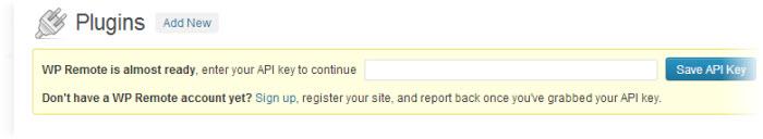 wpremote API request