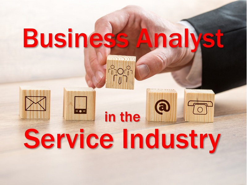 Business Analyst in the Services Industry